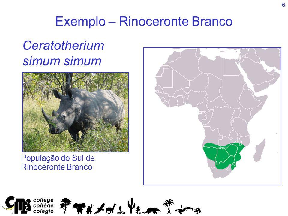 6 Exemplo – Rinoceronte Branco Species Ceratotherium simum simum População do Sul de Rinoceronte Branco