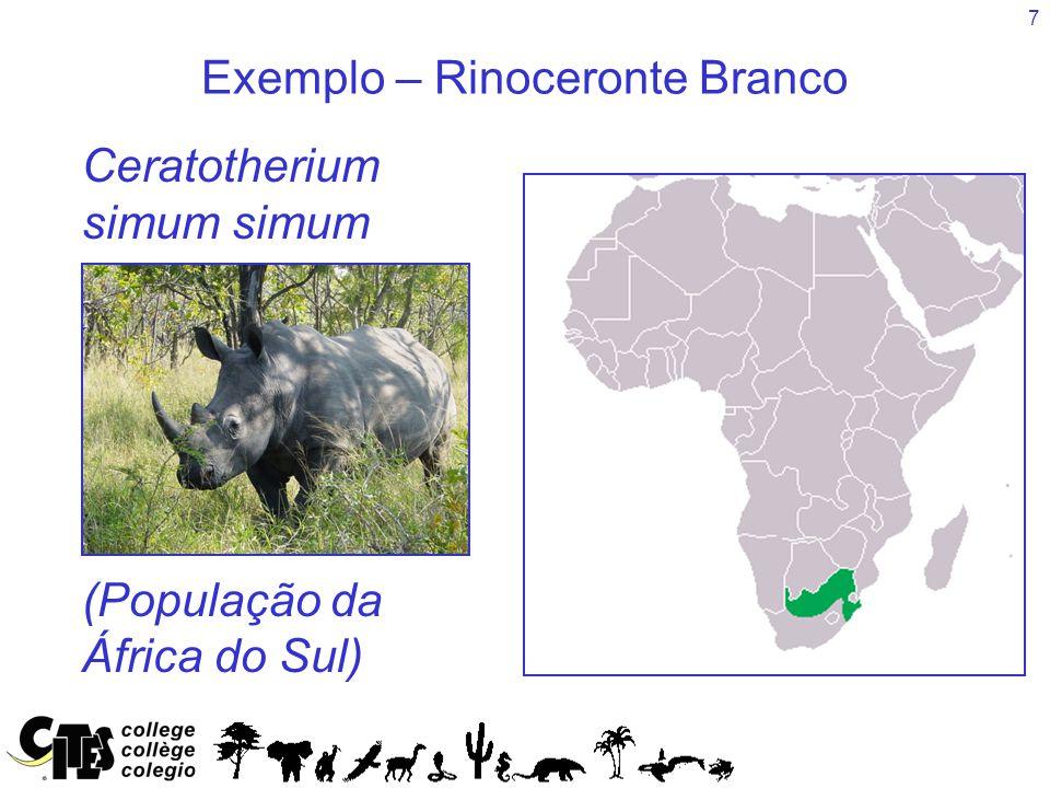 7 Exemplo – Rinoceronte Branco Species Ceratotherium simum simum (População da África do Sul)