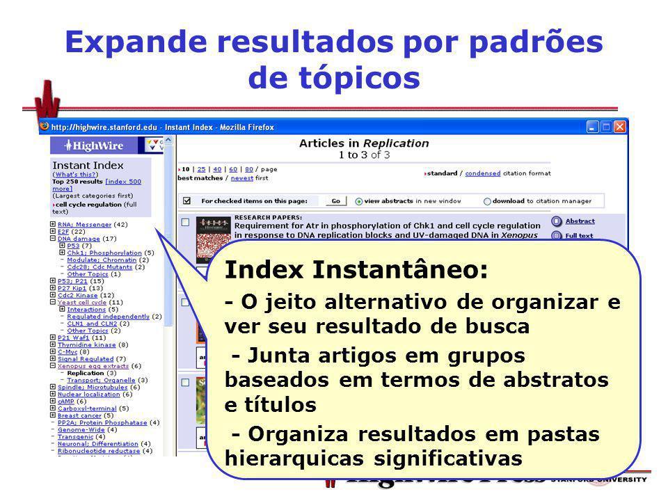 Expande resultados por padrões de tópicos Index Instantâneo: - O jeito alternativo de organizar e ver seu resultado de busca - Junta artigos em grupos baseados em termos de abstratos e títulos - Organiza resultados em pastas hierarquicas significativas