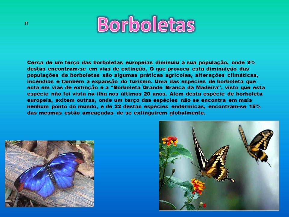 Cerca de um terço das borboletas europeias diminuiu a sua população, onde 9% destas encontram-se em vias de extinção.