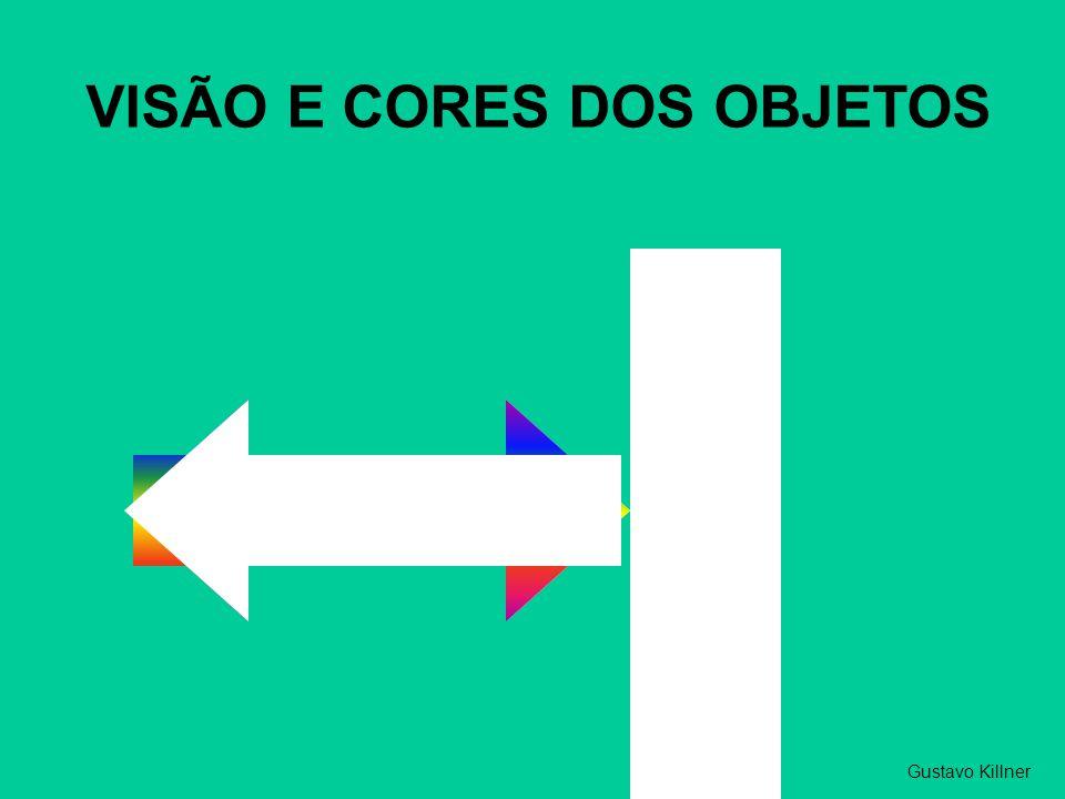 VISÃO E CORES DOS OBJETOS Gustavo Killner