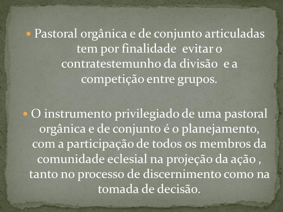 Pastoral orgânica e de conjunto articuladas tem por finalidade evitar o contratestemunho da divisão e a competição entre grupos. O instrumento privile