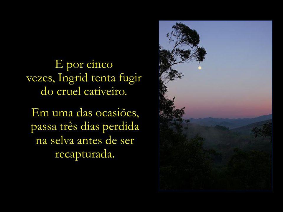 Desce a tarde. No céu, luz sutilíssima, quase invisível, está o primeiro sinal da lua.