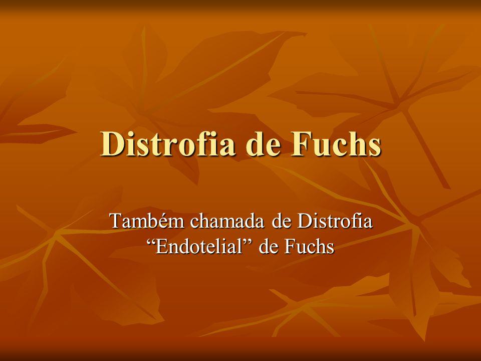 Distrofia de Fuchs Também chamada de Distrofia Endotelial de Fuchs
