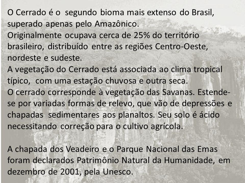O Cerrado é o segundo bioma mais extenso do Brasil, superado apenas pelo Amazônico. Originalmente ocupava cerca de 25% do território brasileiro, distr