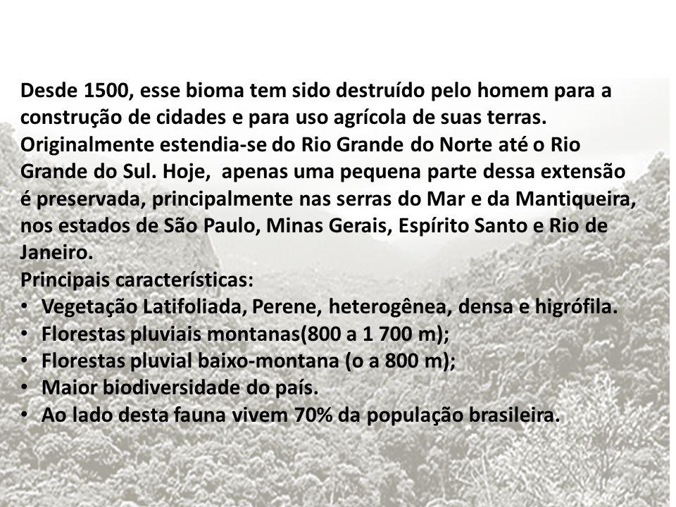 Desde 1500, esse bioma tem sido destruído pelo homem para a construção de cidades e para uso agrícola de suas terras. Originalmente estendia-se do Rio