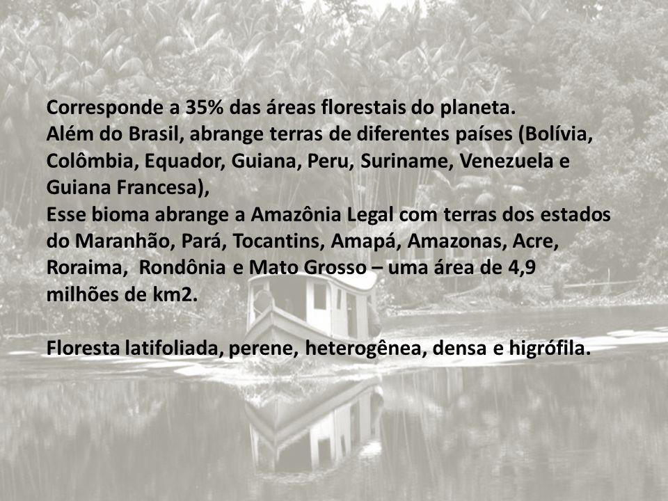 Corresponde a 35% das áreas florestais do planeta. Além do Brasil, abrange terras de diferentes países (Bolívia, Colômbia, Equador, Guiana, Peru, Suri