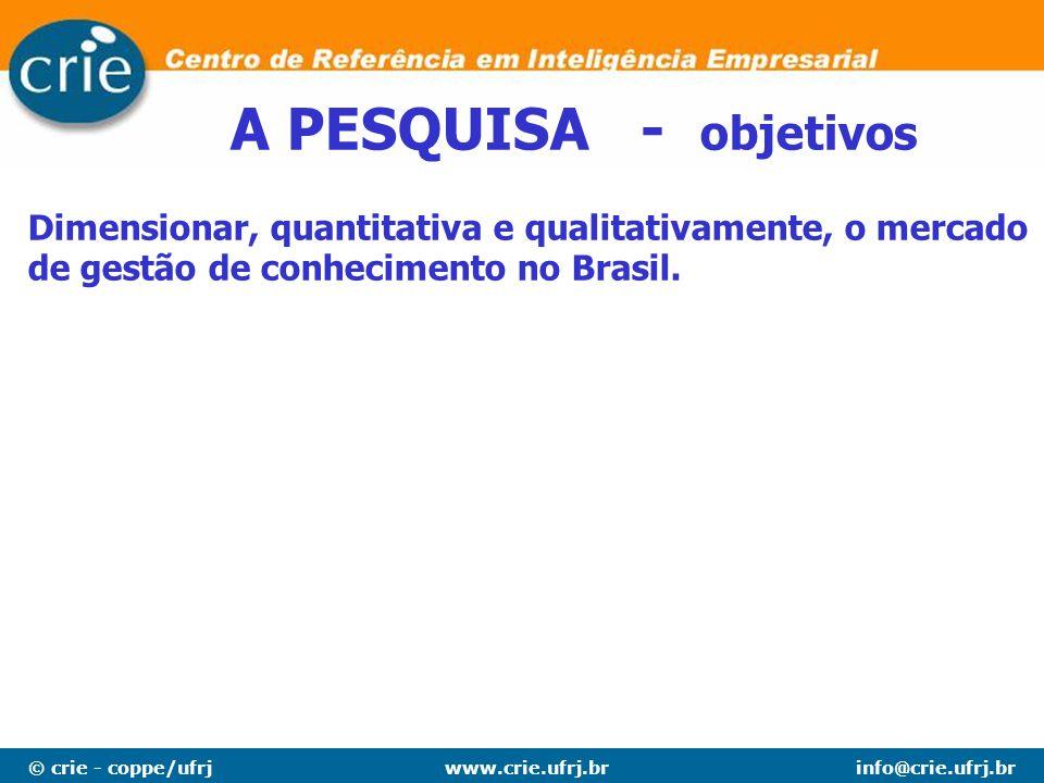 © crie - coppe/ufrjinfo@crie.ufrj.brwww.crie.ufrj.br Dimensionar, quantitativa e qualitativamente, o mercado de gestão de conhecimento no Brasil.
