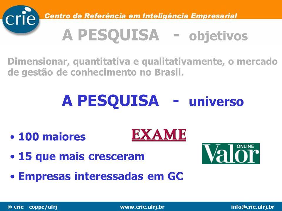 © crie - coppe/ufrjinfo@crie.ufrj.brwww.crie.ufrj.br Dimensionar, quantitativa e qualitativamente, o mercado de gestão de conhecimento no Brasil. A PE