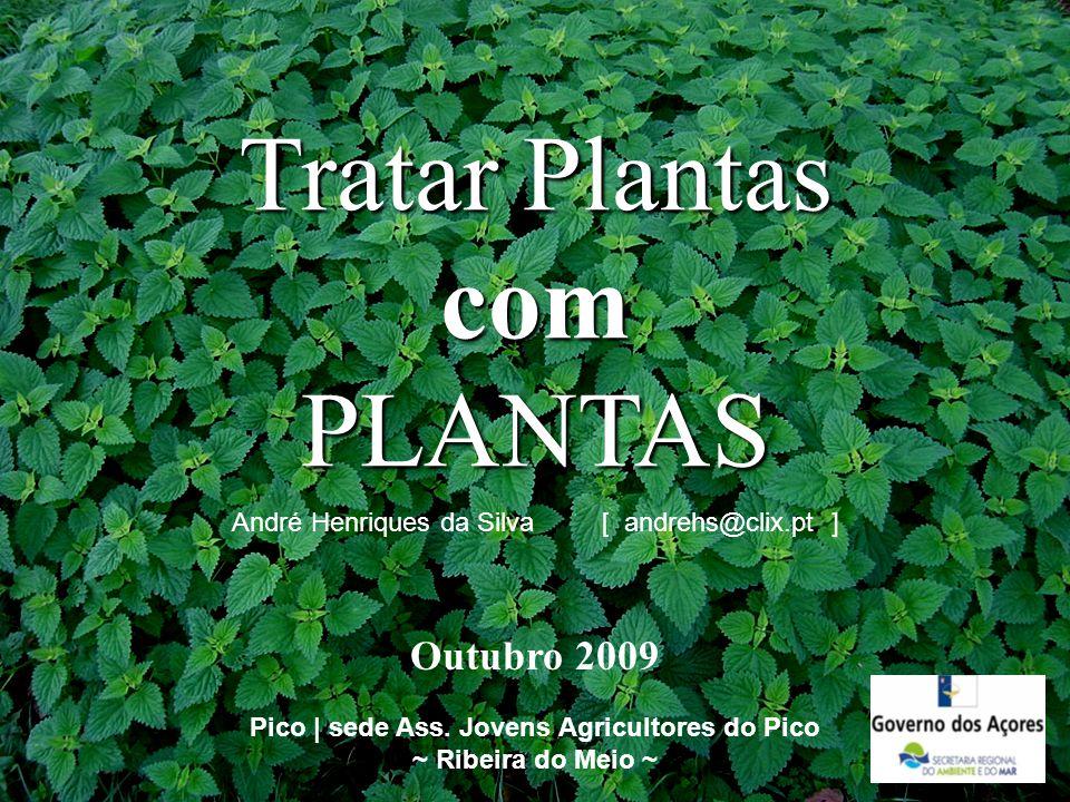 Tratar Plantas com PLANTAS Pico | sede Ass. Jovens Agricultores do Pico ~ Ribeira do Meio ~ André Henriques da Silva [ andrehs@clix.pt ] Outubro 2009
