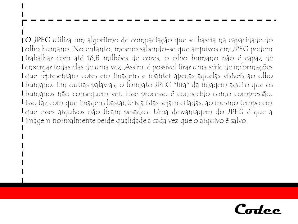 Codec Formato GIF O formato GIF (Graphics Interchange Format) é um tipo de arquivo para imagens que trabalha com uma paleta de 256 cores e foi criado pela empresa CompuServe, em 1987.