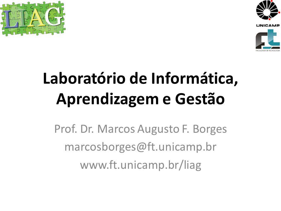 Laboratório de Informática, Aprendizagem e Gestão Prof. Dr. Marcos Augusto F. Borges marcosborges@ft.unicamp.br www.ft.unicamp.br/liag