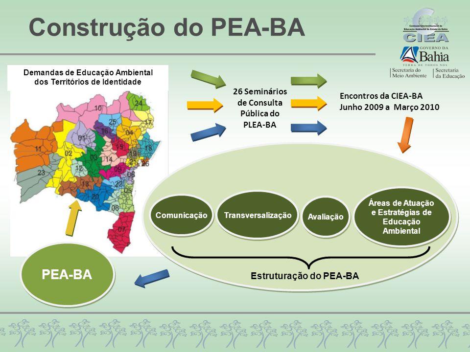 Construção do PEA-BA 26 Seminários de Consulta Pública do PLEA-BA Encontros da CIEA-BA Junho 2009 a Março 2010 Comunicação Transversalização Avaliação