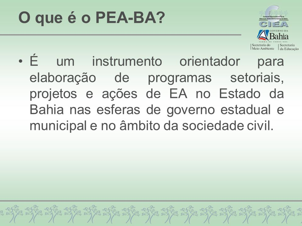 O que é o PEA-BA? É um instrumento orientador para elaboração de programas setoriais, projetos e ações de EA no Estado da Bahia nas esferas de governo
