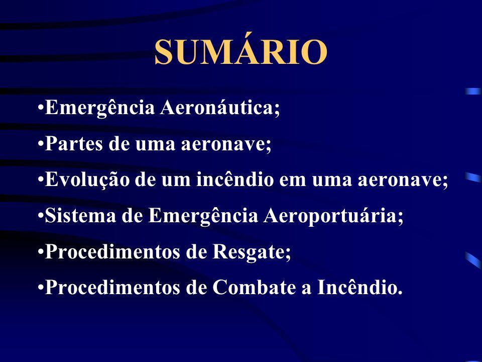 SUMÁRIO Emergência Aeronáutica; Partes de uma aeronave; Evolução de um incêndio em uma aeronave; Sistema de Emergência Aeroportuária; Procedimentos de Resgate; Procedimentos de Combate a Incêndio.