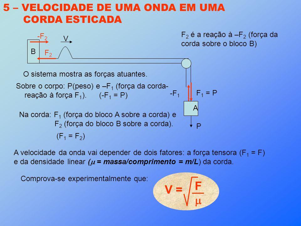 5 – VELOCIDADE DE UMA ONDA EM UMA CORDA ESTICADA O sistema mostra as forças atuantes. P -F 1 Sobre o corpo: P(peso) e –F 1 (força da corda- reação à f