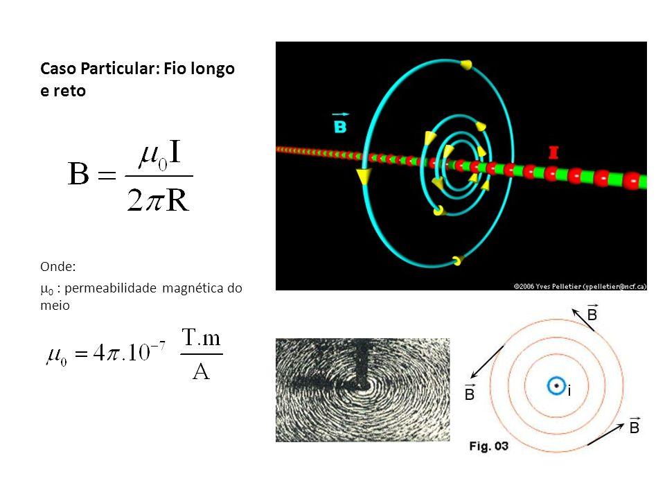 Caso Particular: espira circular Para espiras superpostas com N voltas