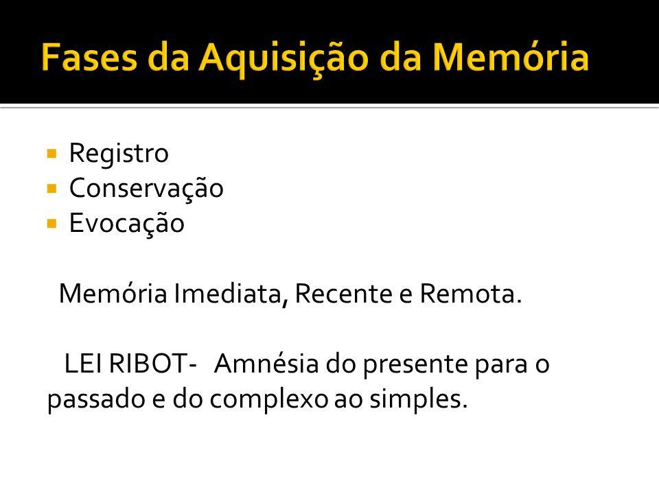 Registro Conservação Evocação Memória Imediata, Recente e Remota. LEI RIBOT- Amnésia do presente para o passado e do complexo ao simples.