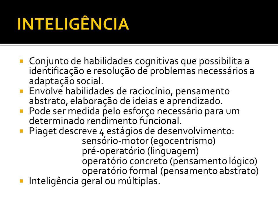 Conjunto de habilidades cognitivas que possibilita a identificação e resolução de problemas necessários a adaptação social. Envolve habilidades de rac