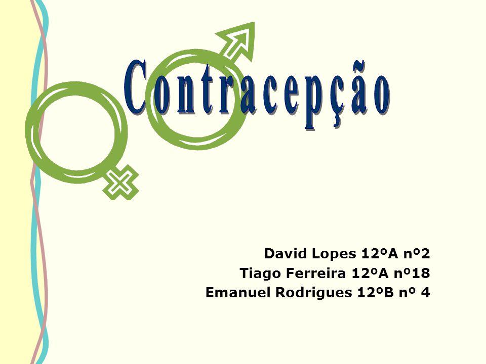 David Lopes 12ºA nº2 Tiago Ferreira 12ºA nº18 Emanuel Rodrigues 12ºB nº 4