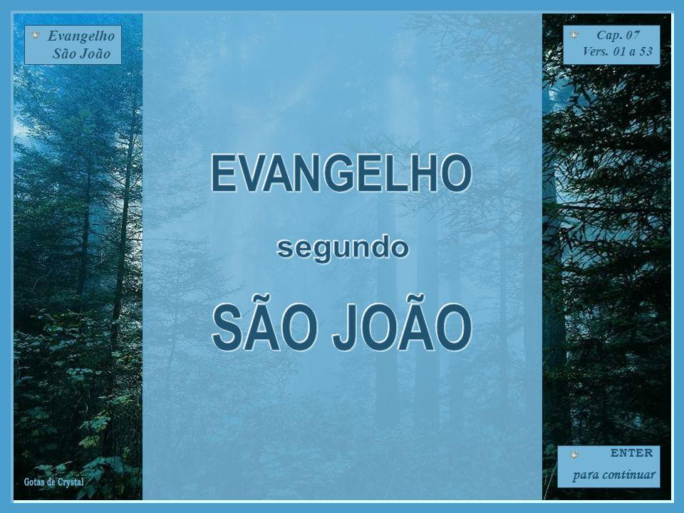 Evangelho São João Cap. 07 Vers. 01 a 53 ENTER para continuar