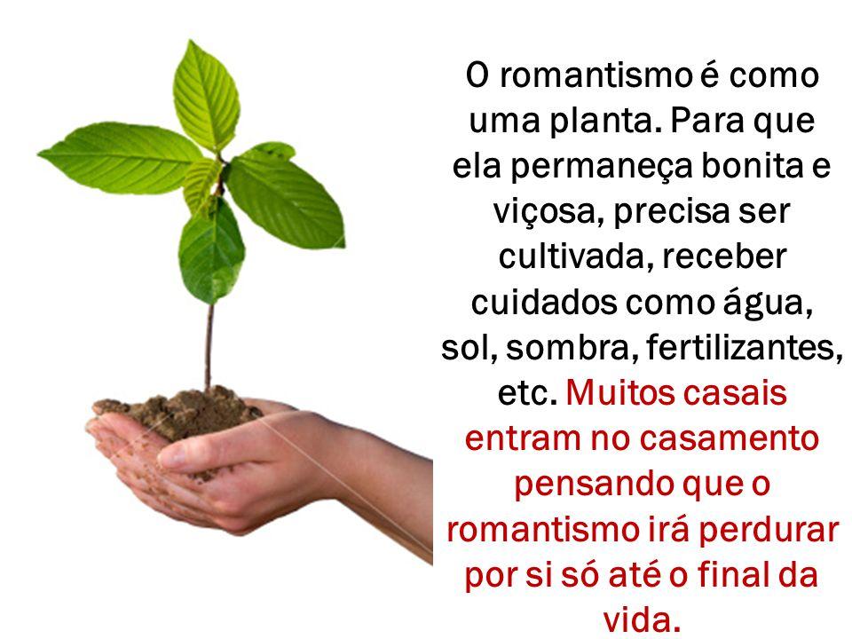 O romantismo é como uma planta. Para que ela permaneça bonita e viçosa, precisa ser cultivada, receber cuidados como água, sol, sombra, fertilizantes,