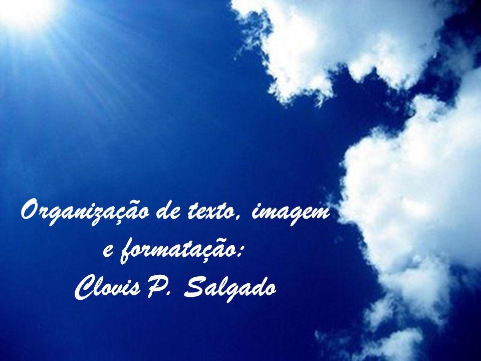 Organização de texto, imagem e formatação: Clovis P. Salgado
