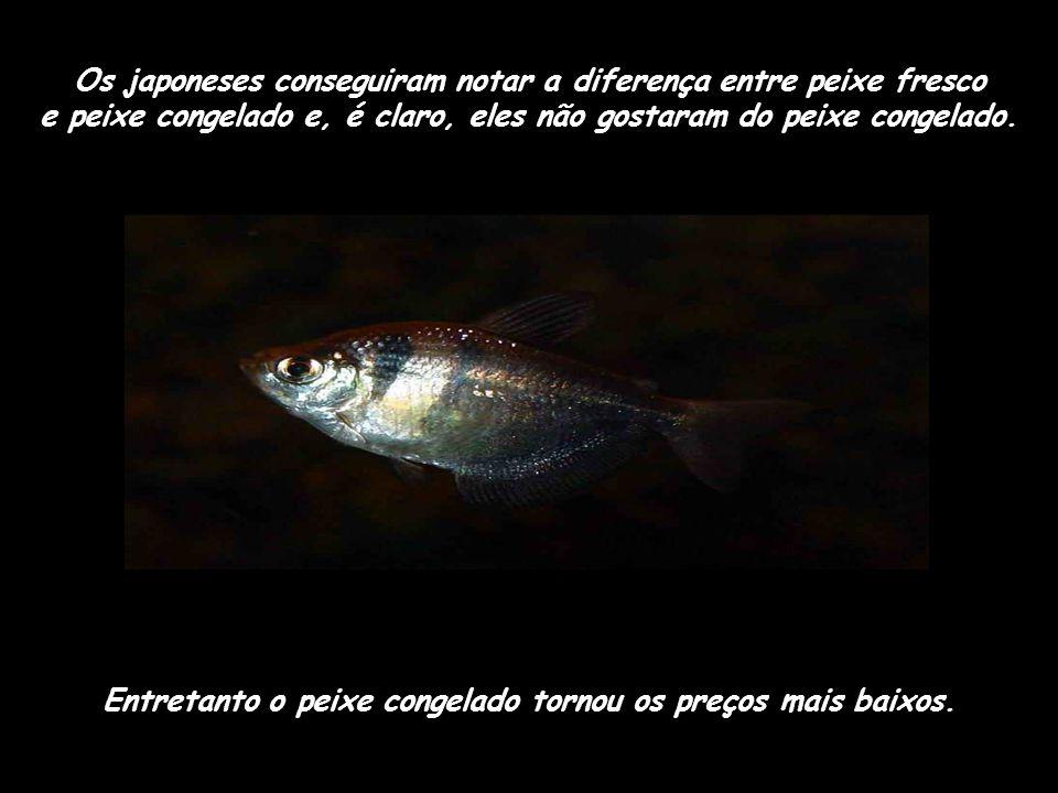 os japoneses não gostaram do gosto destes peixes. para resolver este problema, as empresas de pesca instalaram congeladores em seus barcos. Eles pesca