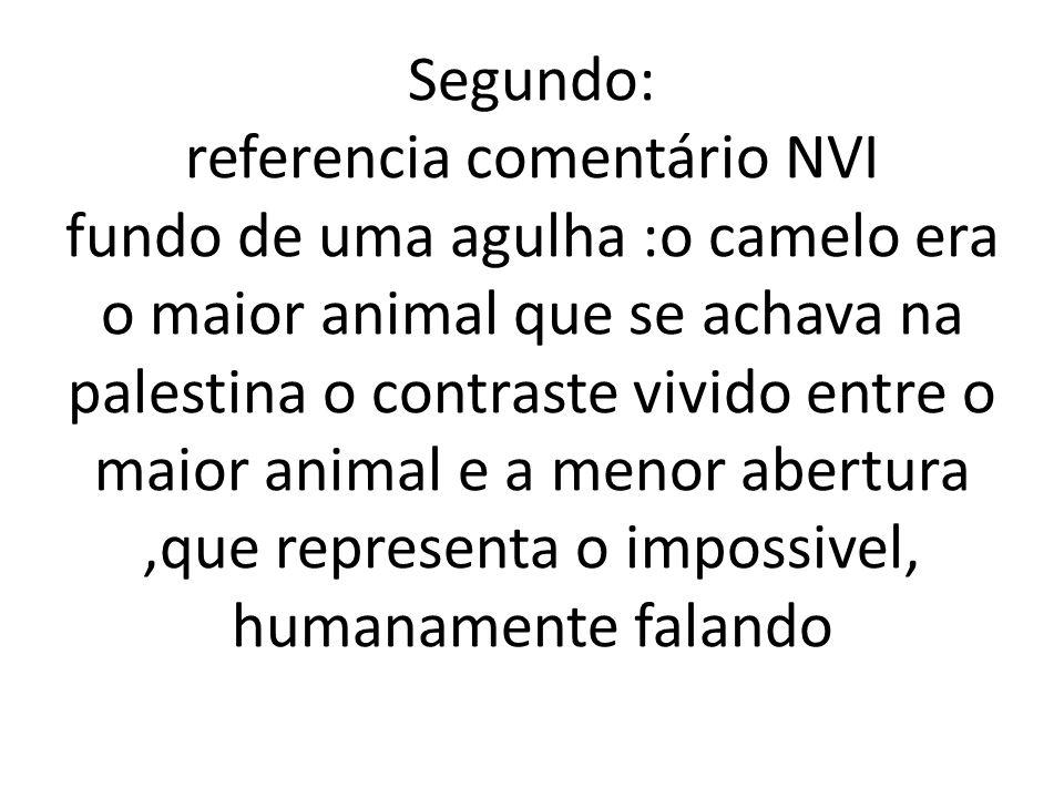 Segundo: referencia comentário NVI fundo de uma agulha :o camelo era o maior animal que se achava na palestina o contraste vivido entre o maior animal