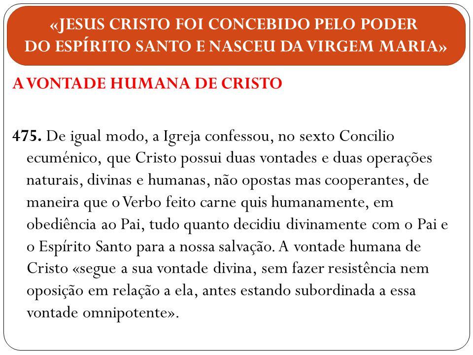 A VONTADE HUMANA DE CRISTO 475. De igual modo, a Igreja confessou, no sexto Concilio ecuménico, que Cristo possui duas vontades e duas operações natur
