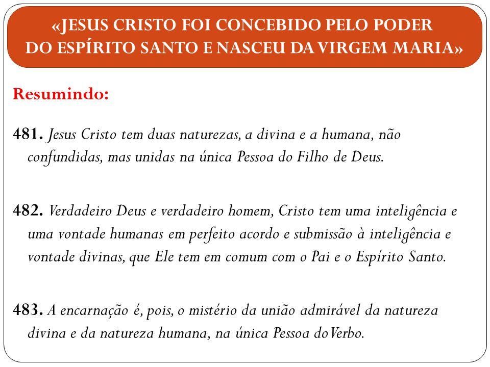 Resumindo: 481. Jesus Cristo tem duas naturezas, a divina e a humana, não confundidas, mas unidas na única Pessoa do Filho de Deus. 482. Verdadeiro De