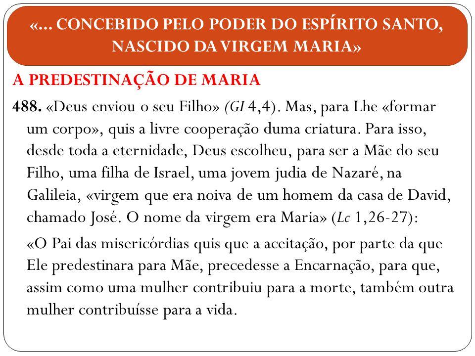 A PREDESTINAÇÃO DE MARIA 488. «Deus enviou o seu Filho» (GI 4,4). Mas, para Lhe «formar um corpo», quis a livre cooperação duma criatura. Para isso, d