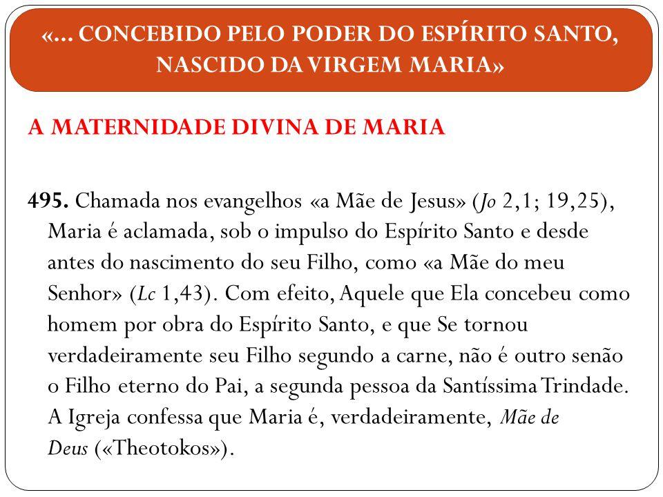 A MATERNIDADE DIVINA DE MARIA 495. Chamada nos evangelhos «a Mãe de Jesus» (Jo 2,1; 19,25), Maria é aclamada, sob o impulso do Espírito Santo e desde
