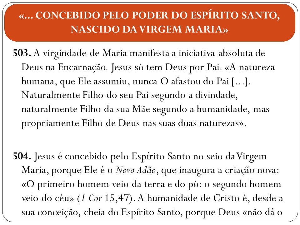 503. A virgindade de Maria manifesta a iniciativa absoluta de Deus na Encarnação. Jesus só tem Deus por Pai. «A natureza humana, que Ele assumiu, nunc