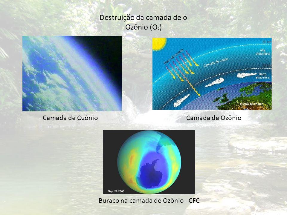 Destruição da camada de o Ozônio (O 3 ) Camada de Ozônio Buraco na camada de Ozônio - CFC