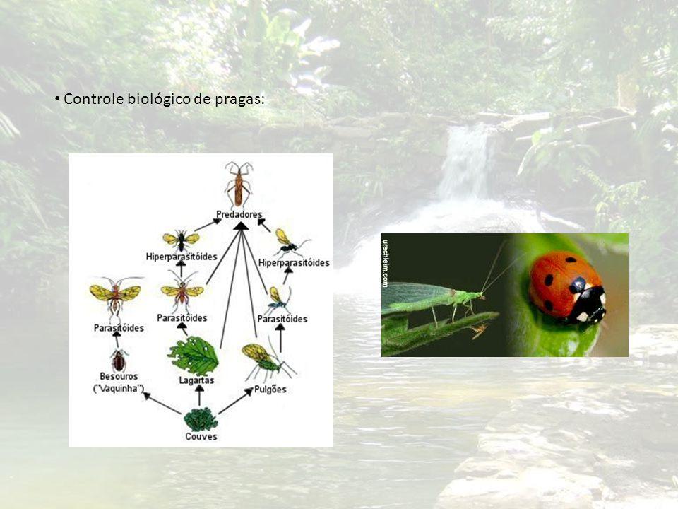 Controle biológico de pragas: