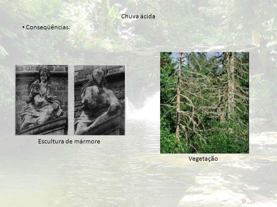 Chuva ácida Escultura de mármore Vegetação Conseqüências: