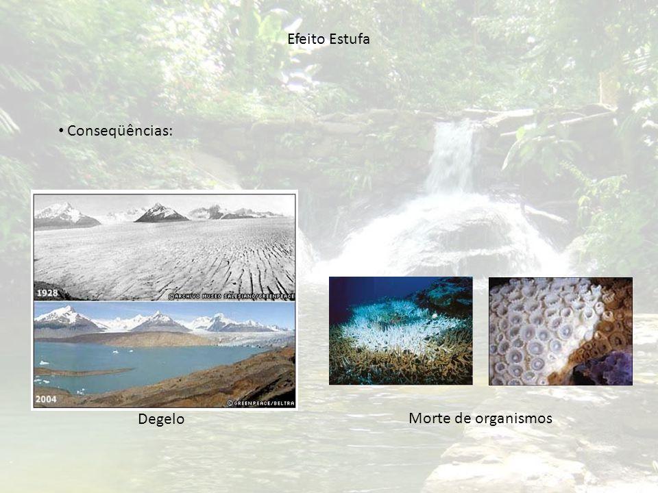 Alotropia (O 2 e O 3 ) Ação oxidante do oxigênio: Filtro de Ozônio Radicais Livres
