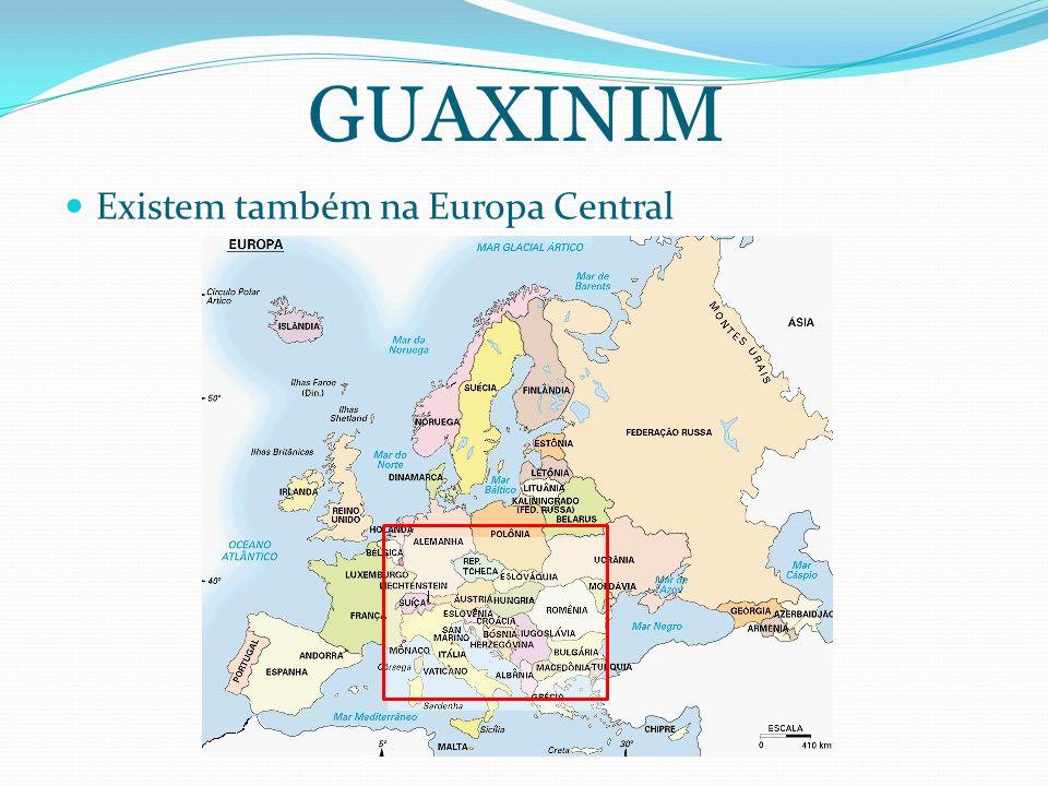 GUAXINIM Existem também na Europa Central