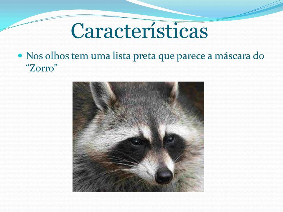 Características Nos olhos tem uma lista preta que parece a máscara do Zorro