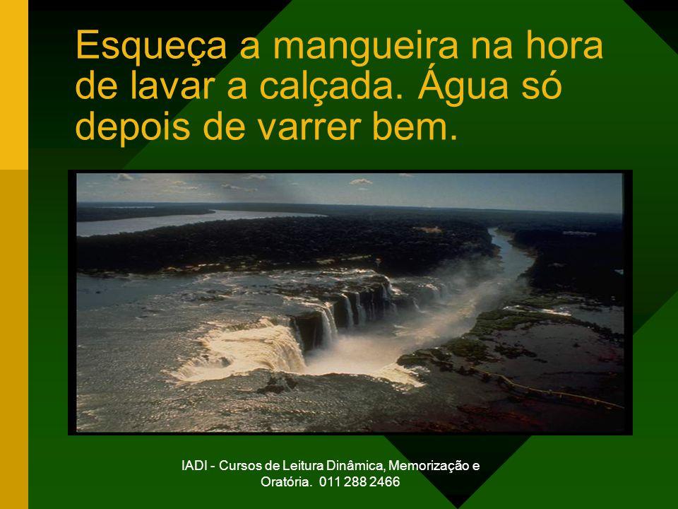 IADI - Cursos de Leitura Dinâmica, Memorização e Oratória. 011 288 2466 Esqueça a mangueira na hora de lavar a calçada. Água só depois de varrer bem.