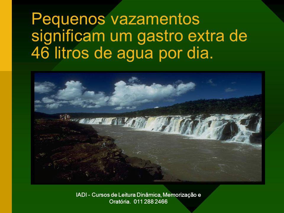 IADI - Cursos de Leitura Dinâmica, Memorização e Oratória. 011 288 2466 Pequenos vazamentos significam um gastro extra de 46 litros de agua por dia.
