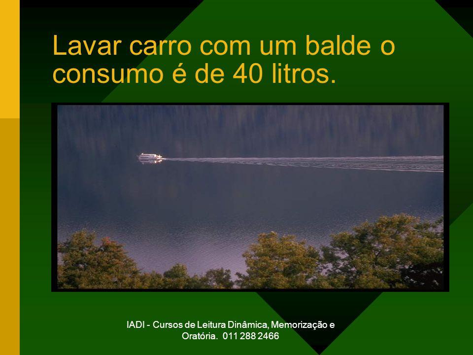 IADI - Cursos de Leitura Dinâmica, Memorização e Oratória. 011 288 2466 Lavar carro com um balde o consumo é de 40 litros.