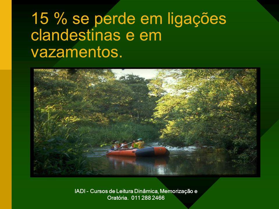IADI - Cursos de Leitura Dinâmica, Memorização e Oratória. 011 288 2466 15 % se perde em ligações clandestinas e em vazamentos.