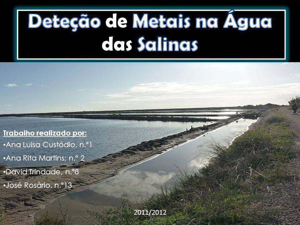 Detetar a presença de metais pesados na água das salinas.
