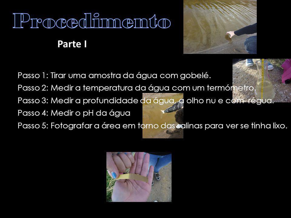 Parte I Passo 1: Tirar uma amostra da água com gobelé. Passo 2: Medir a temperatura da água com um termómetro. Passo 3: Medir a profundidade da água,