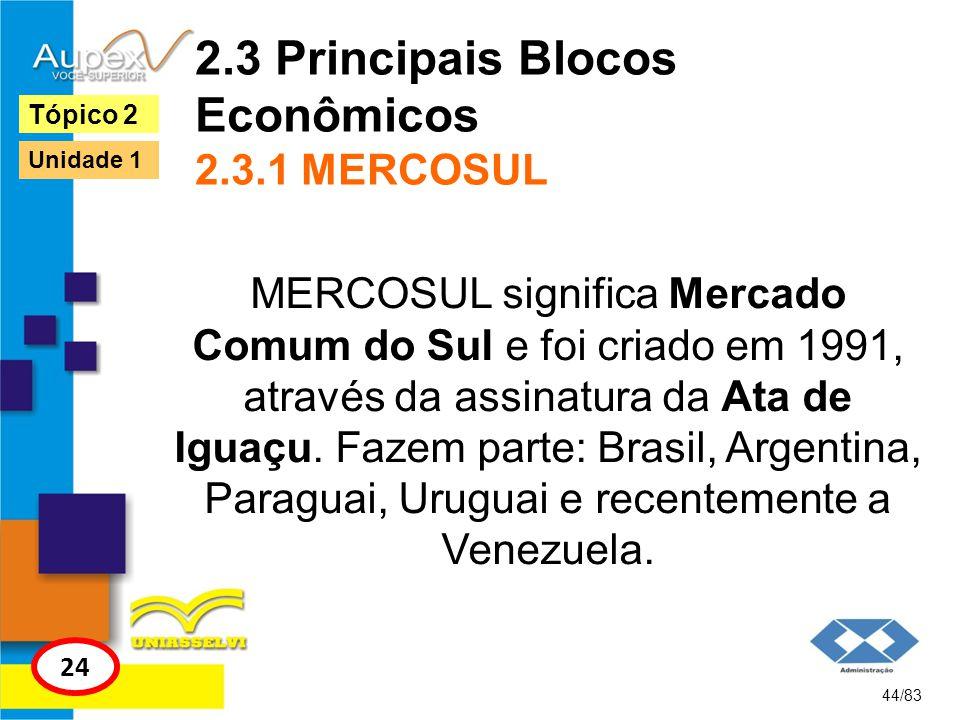 2.3 Principais Blocos Econômicos 2.3.1 MERCOSUL MERCOSUL significa Mercado Comum do Sul e foi criado em 1991, através da assinatura da Ata de Iguaçu.