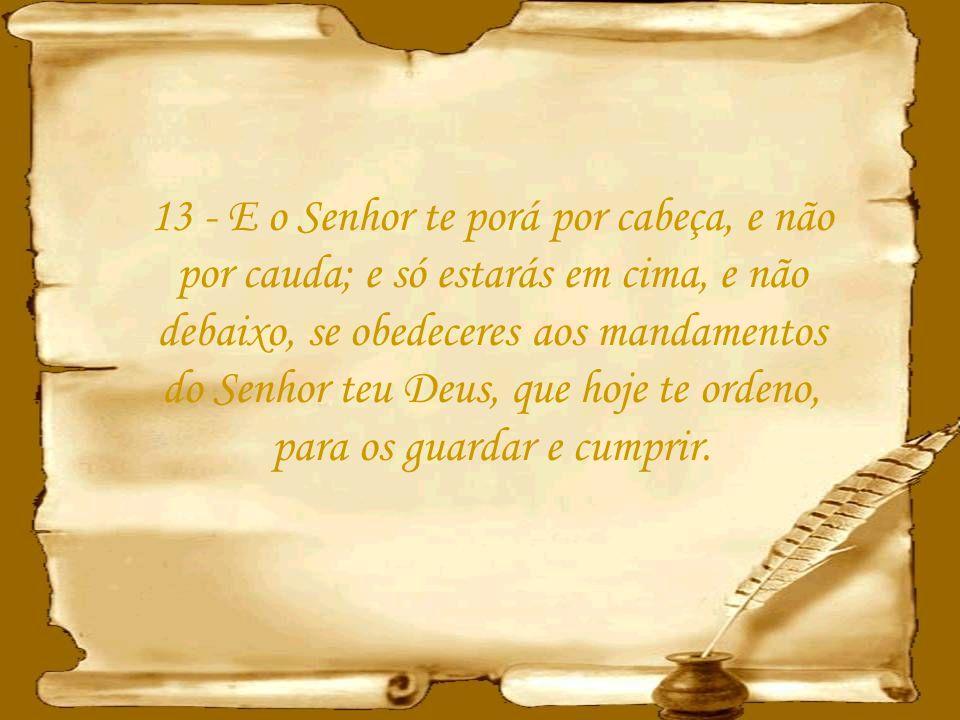 12 - O Senhor te abrirá o seu bom tesouro, o céu, para dar chuva à tua terra no seu tempo, e para abençoar toda a obra das tuas mãos; e emprestarás a