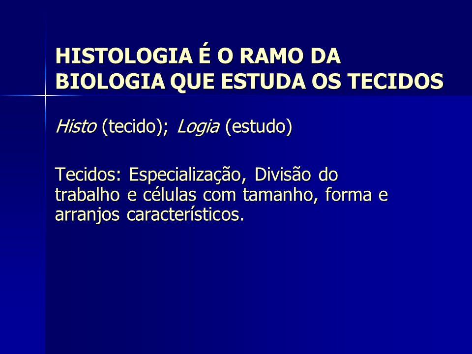 HISTOLOGIA É O RAMO DA BIOLOGIA QUE ESTUDA OS TECIDOS Histo (tecido); Logia (estudo) Tecidos: Especialização, Divisão do trabalho e células com tamanh