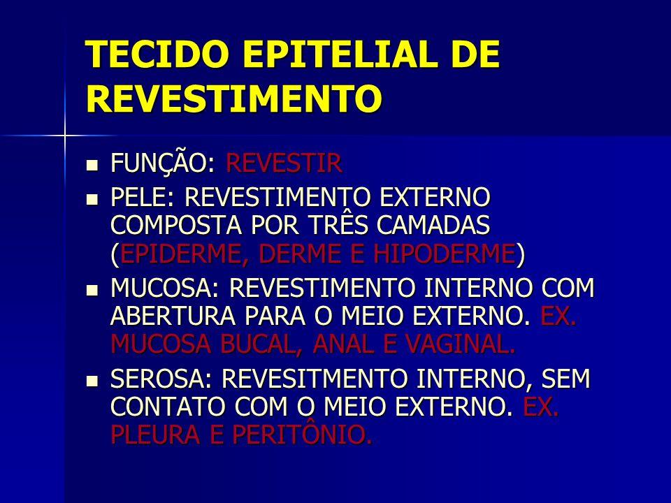 TECIDO EPITELIAL DE REVESTIMENTO FUNÇÃO: REVESTIR FUNÇÃO: REVESTIR PELE: REVESTIMENTO EXTERNO COMPOSTA POR TRÊS CAMADAS (EPIDERME, DERME E HIPODERME)